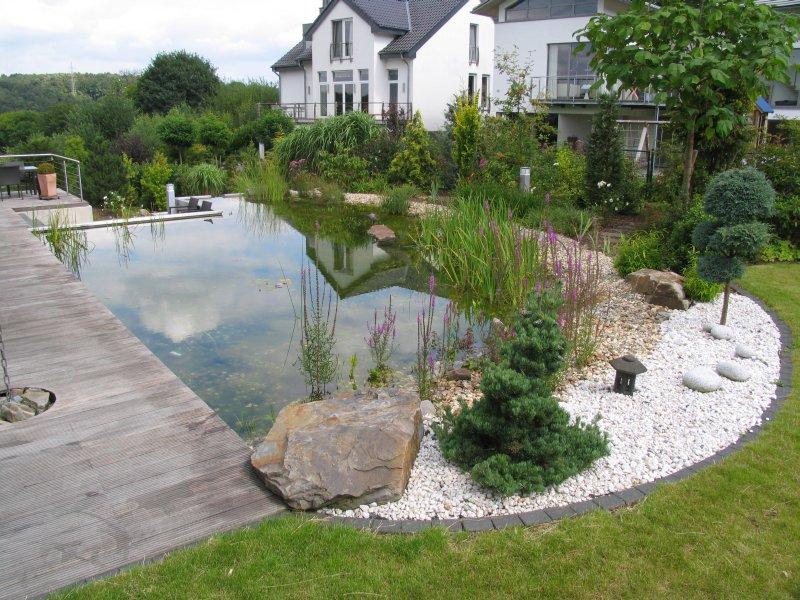 Schwimmteich mit treppe edelstahl wasserkaskaden und for Garten randgestaltung
